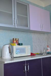 Apartment on Lenina 353, Ferienwohnungen  Wolschki - big - 44