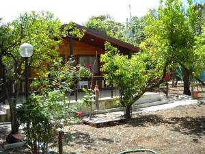 Incantevole villa sul mare - AbcAlberghi.com