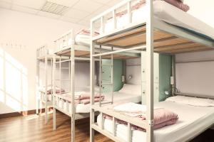 Cat's Hostel (23 of 46)