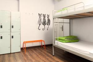 Cat's Hostel (20 of 46)