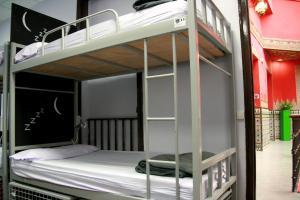 Cat's Hostel (4 of 46)