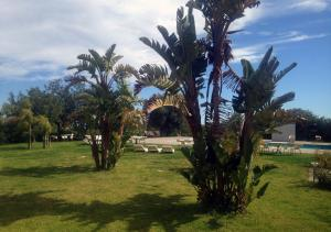 Zaiera Resort Club, Resorts  Solarino - big - 31