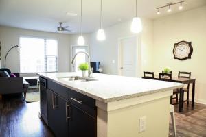 Dormigo Eastside Apartment 4, Apartments  Austin - big - 52
