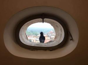 La Casa nel Borgo Antico - Rionero in Vulture