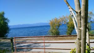 Areti holiday home in front of the sea with a large garden Argolida Greece