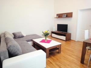 Exclusive Vienna Apartment - Vienna