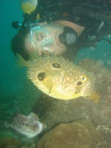 Pousada Laguna, Vendégházak  Cabo Frio - big - 39