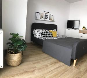 Apartament Ulanska