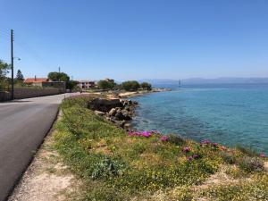 Aegina Island Billiard Mezzaninne Aegina Greece