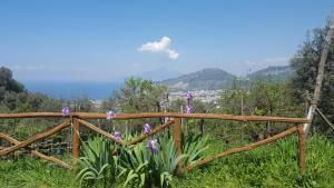 Gli Ulivi Agriturismo, Farmy  Sant'Agnello - big - 101