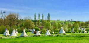 Location gîte, chambres d'hotes Les Tipis du Bonheur de Vivre dans le département Sarthe 72