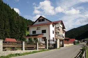 Accommodation in Gorj
