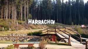 Harrachov Resident Apartments with Terrace - Hotel - Harrachov