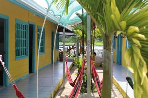 Tortuguero Hostel & Backpackers