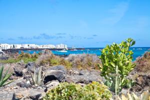 Luxe Punta Mujeres Sea Views!, Apartmanok  Punta de Mujeres - big - 4
