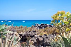 Luxe Punta Mujeres Sea Views!, Apartments  Punta de Mujeres - big - 9