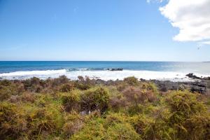 Luxe Punta Mujeres Sea Views!, Apartmanok  Punta de Mujeres - big - 11