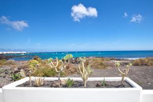Luxe Punta Mujeres Sea Views!, Apartmanok  Punta de Mujeres - big - 15
