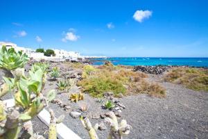Luxe Punta Mujeres Sea Views!, Apartmanok  Punta de Mujeres - big - 20