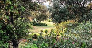 Farm Stay Gli Oleandri - AbcAlberghi.com