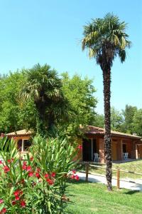 Camping Zocco Centro Vacanze - AbcAlberghi.com