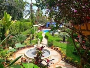 El Encanto Inn & Suites, Hotely  San José del Cabo - big - 18