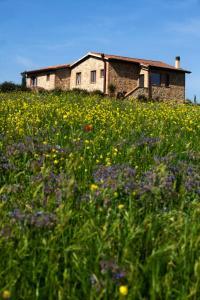 Casale Sterpeti, Panziók  Magliano in Toscana - big - 24