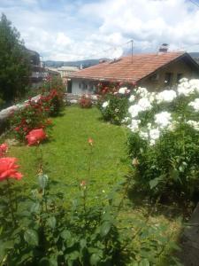 Guest house Ema, Vendégházak  Szarajevó - big - 11