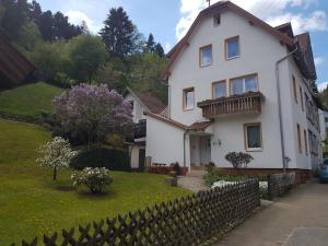Apartment Lucia - Calmbach