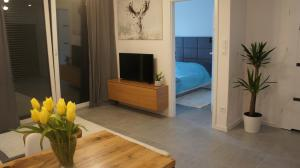 Apartament Cieplice