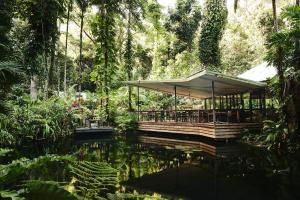 Daintree Eco Lodge - Cow Bay