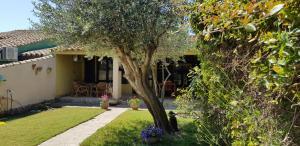 obrázek - Casa del Riccio