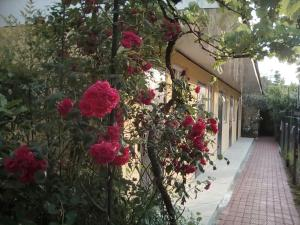 Гостевой дом Курортный