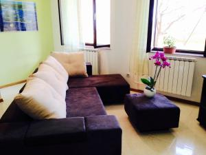 Apartment Dunja 1620