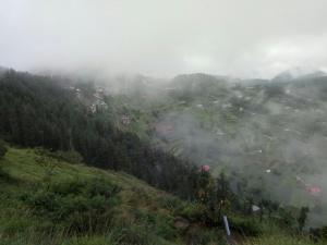 The Peak - Mai Jūbar