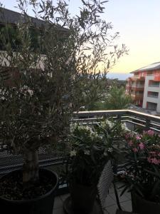 Appartement avec balcon - Apartment - Ville-la-Grand