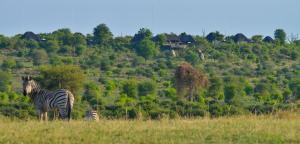 Ngoma Safari Lodge (7 of 44)