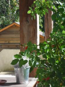 Location gîte, chambres d'hotes Cottage Prairie Bonheur dans le département Yvelines 78