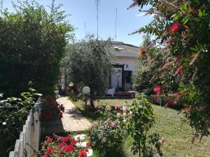 Geko's House - AbcAlberghi.com