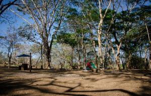 Camping Howler Monkey Farm, Playa Flamingo