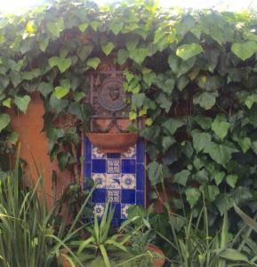 Jerningham Street Cottage, Panziók  Adelaide - big - 12