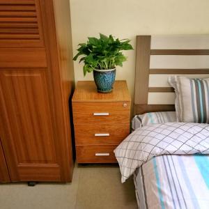 . Ürümqi New Home Apartment