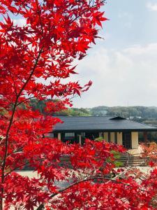 obrázek - NARA japanese garden villa