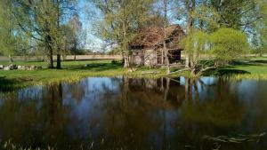 Brīvdienu māja Bienes, Дома для отпуска  Сабиле - big - 45