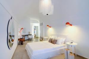 Santorini Secret Suites & Spa (27 of 118)