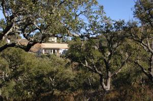 obrázek - Maison de campagneRomantic house in hills of Algarve...