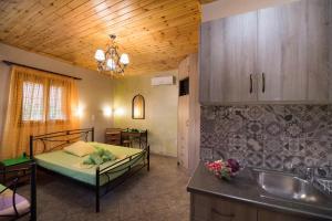 Villa Dimitris Apartments & Bungalows, Apartmány  Lefkada - big - 2