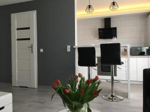 Apartamenty AP 2