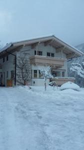 Haus-Claudia - Apartment - Viehhofen