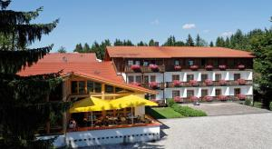 Landhotel Tannenhof - Langdorf